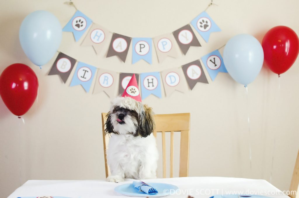 puppy party decorations