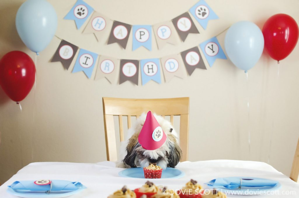 Puppy Birthday Party with pup cakes