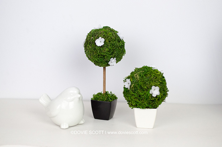 DIY Dollar Tree Moss Topiary